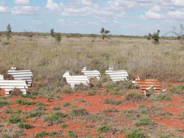 Kangaroo Walk