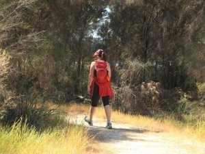 Samphire Cove Trail