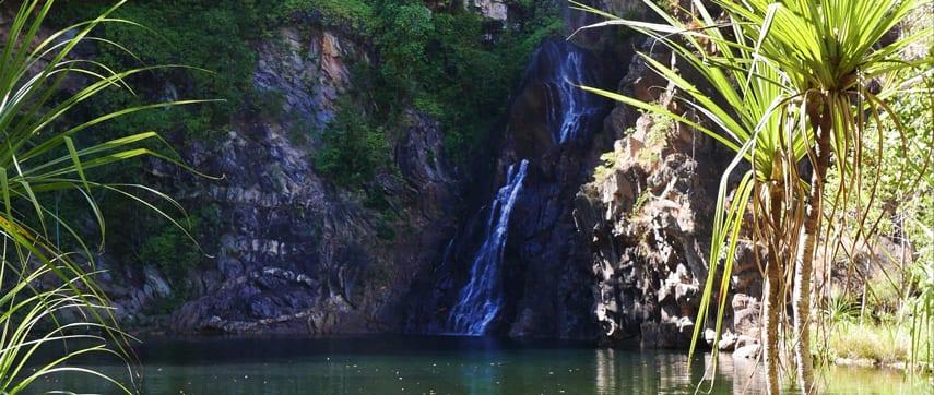 Tjaynera (Sandy Creek)