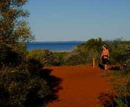 Wulyibidi Yaninyina Trail