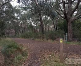 Adventure Circuit Trail