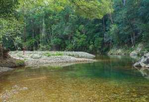 Booloumba Falls Walk