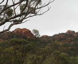 Devil's Peak Walking Trail