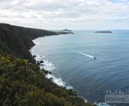 Heysen Trail - Waitpinga Cliffs to Kings Beach