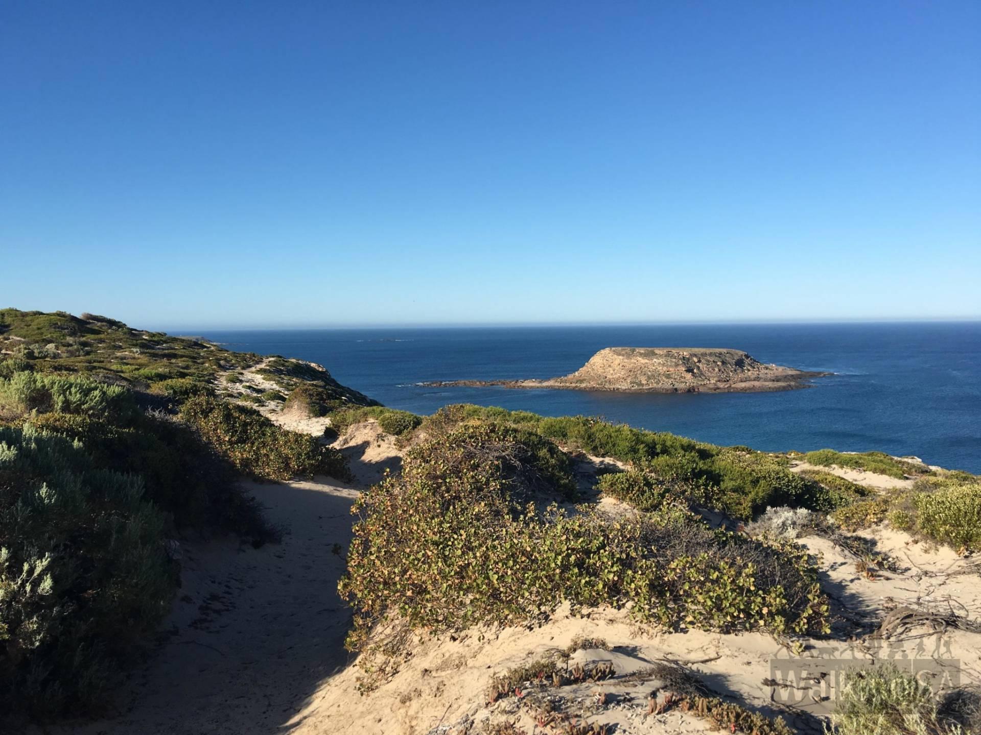 Royston Head Hike
