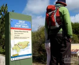 Thomson-Pfitzner Plaster Trail