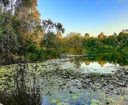 Berrinba Wetlands