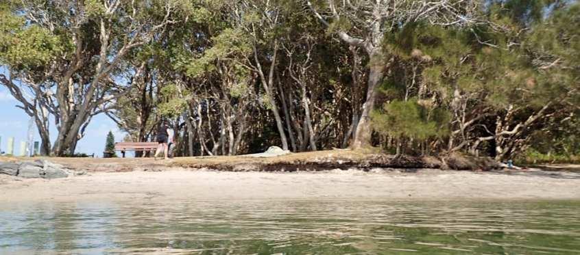 Yuraygir Coastal Trail. Trail Hiking Australia