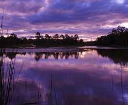 Billabong Outlook Circuit Berrinba Wetlands