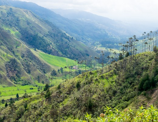 Hiking Valle de Cocora in Salento - Trailing Rachel