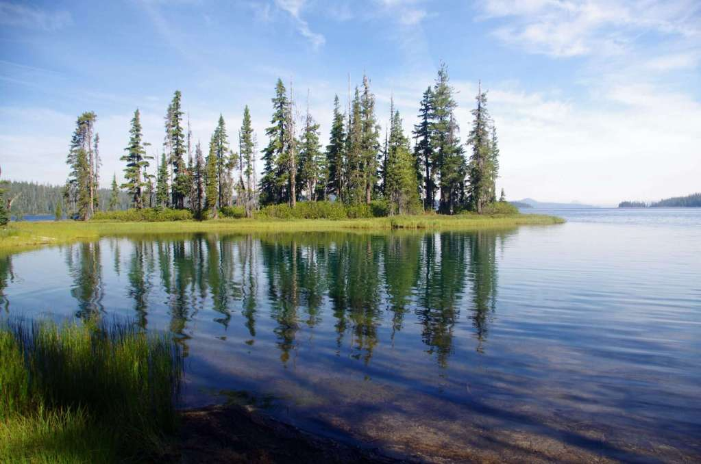 A small forested island in a lake.