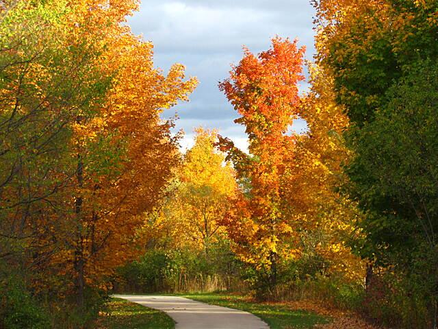 Great fall ride.