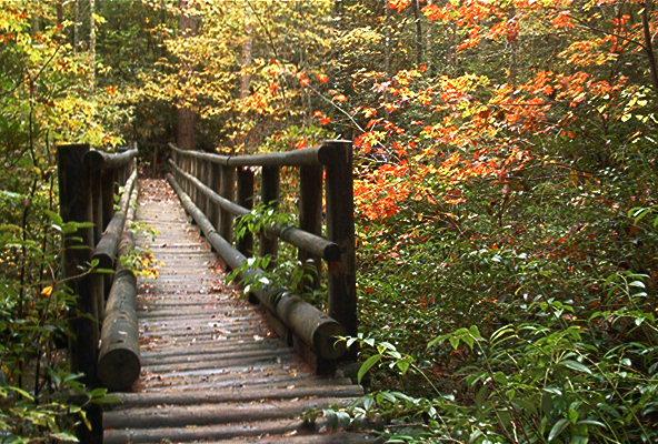 Fall In The Mountains Wallpaper Appalachian Trail Desktop Backgrounds Screensavers