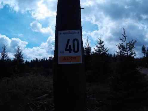 44_Rennsteiglauf_39