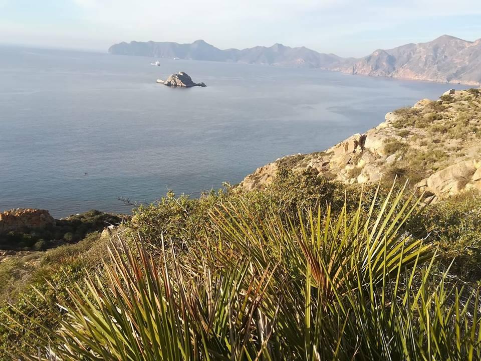 Cabo Tiñoso (Alejandro Mancha)