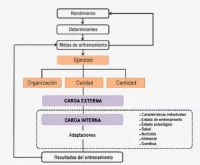 Cargas externas e internas (Fuente: blog.enduracegroup.org) - Monitorizar la carga