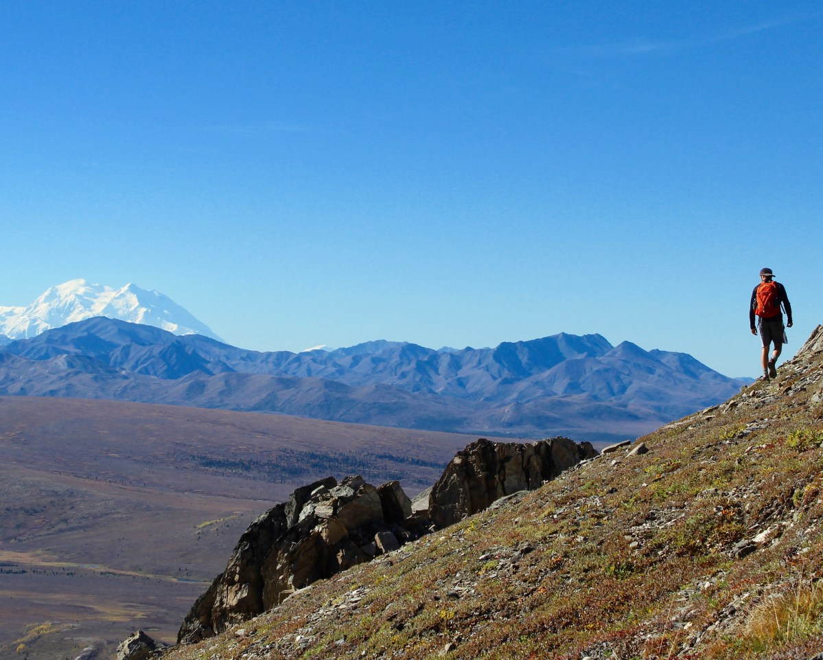 The Savage Alpine Trail - Denali National Park