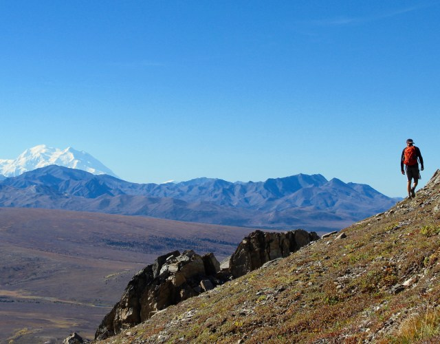 The Savage Alpine Trail – Denali National Park