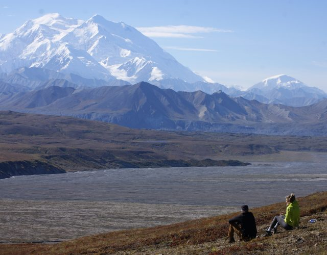 Why You Should Visit Denali This Summer