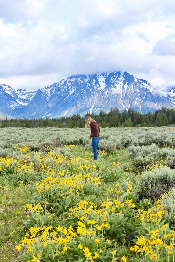 grand teton national park in one day