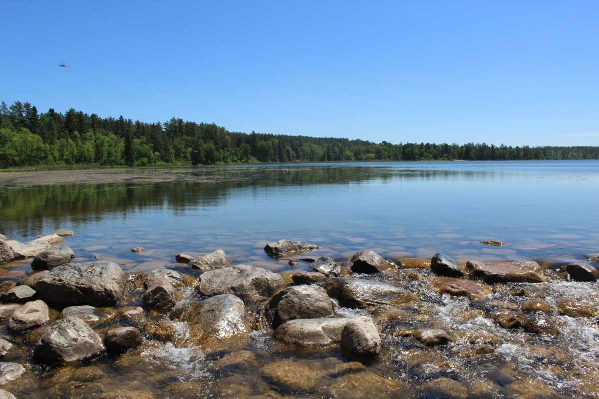 Lake Itasca - The Source of the Mississippi
