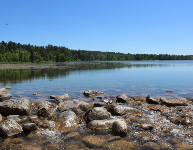 Lake Itasca – The Source of the Mississippi