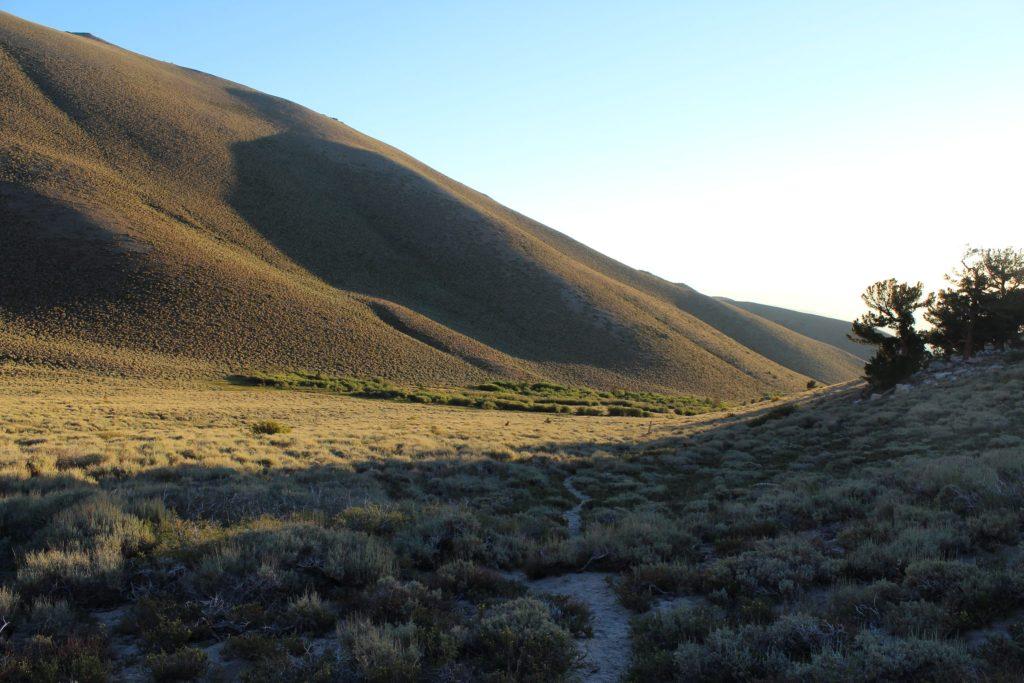 boundary peak Nevada