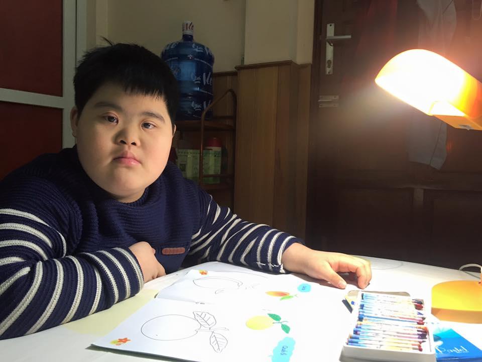 Chiến lược dạy học và hỗ trợ học sinh khuyết tật trí tuệ học hòa nhập cấp tiểu học