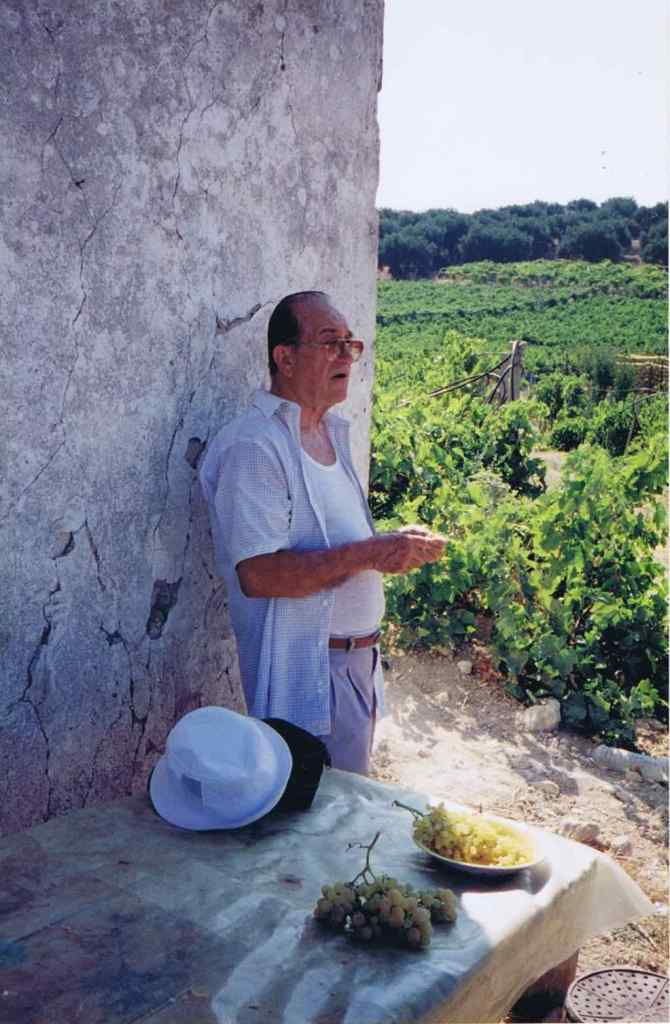 Helias Doundoulakis, seen here a few years ago, at his family's beloved vineyard in Archanes, Crete. The German hospital's foundation remains today as a base for the worker's shed, and as a platform to dry grapes —  thus producing raisins. It was here, on May 20, 1941, that German planes mistook Helias and his father Dimitri for soldiers, narrowly surviving. Nearby is the ancient Minoan excavation site, Knossos.
