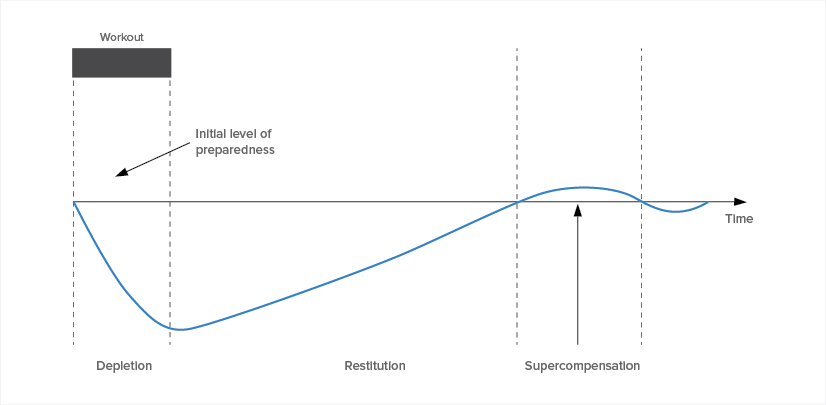 Figure A: Level of preparedness becomes depleted by training stress, only to be restored as time moves on through recovery. According to the model, you leave compensation through recovery, and surpass earlier preparedness opening a window to reintroduce training stress.