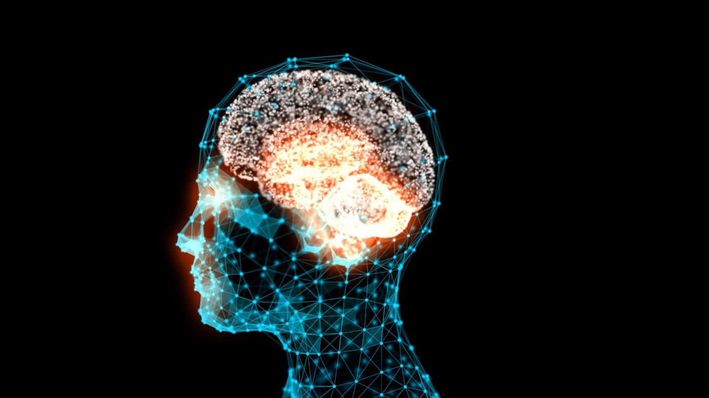 Neurolearning : Calme Et Attentif…comme Une Grenouille ?