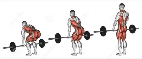 Image result for Deadlifts