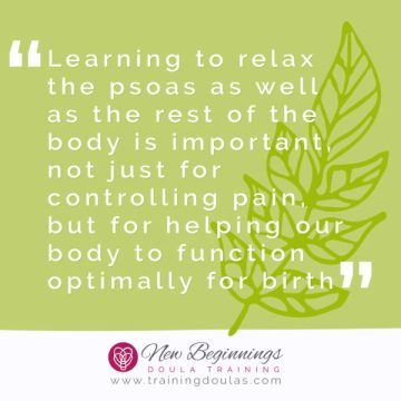 Psoas and How They Effect Pregnancy, Labor, and Birth
