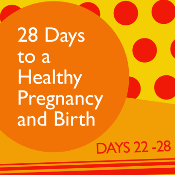 28 Days to a Healthy Pregnancy and Birth: Days 22 – 28
