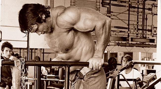 Arnold3