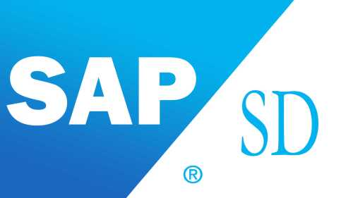 small resolution of sap sd training in chennai