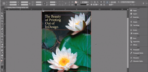 adobe-indesign-book-cover