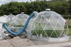 grow domes