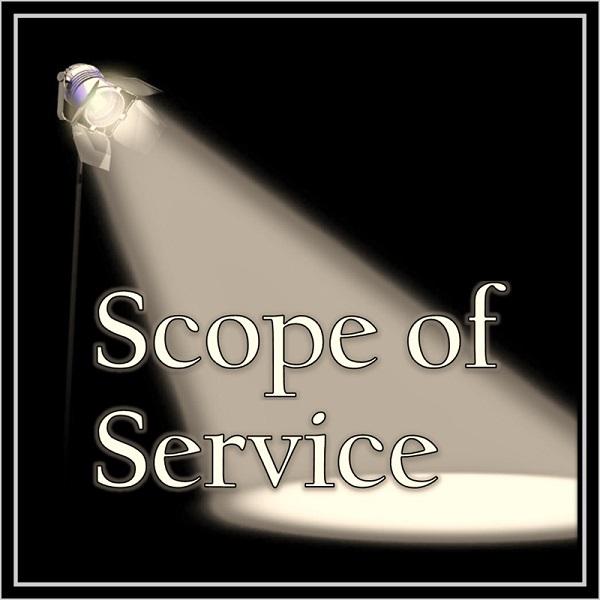 <h4>Scope of Service</h4>