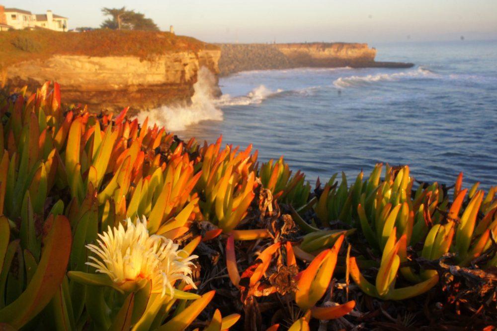 Sunset on the cliffs.