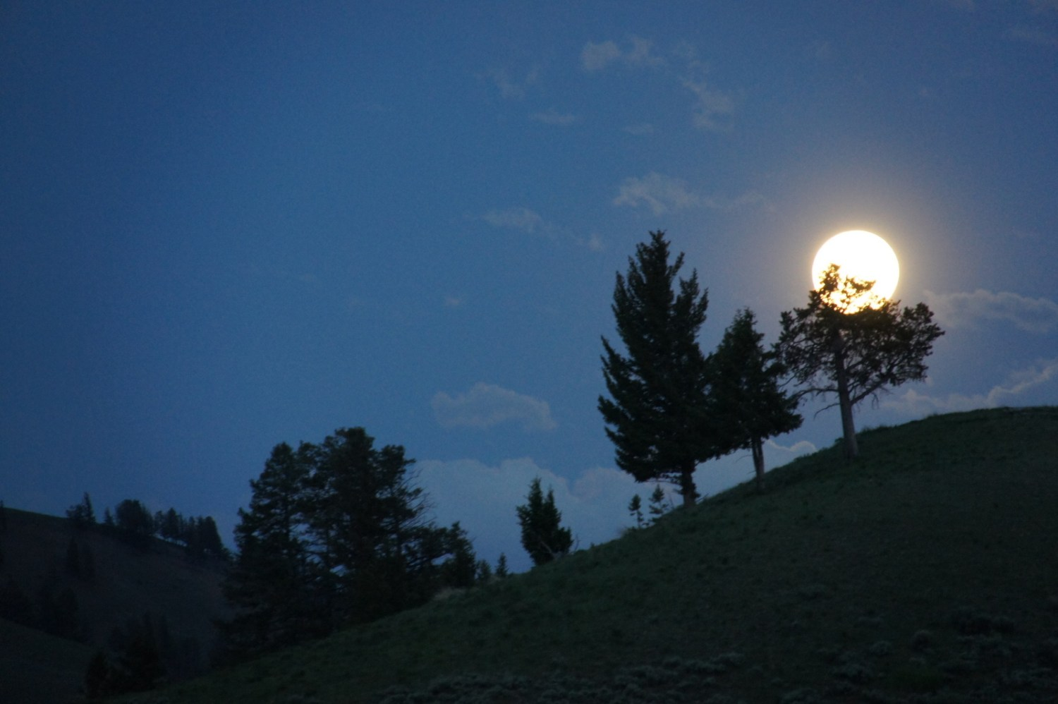 A full moon rises over Yellowstone.