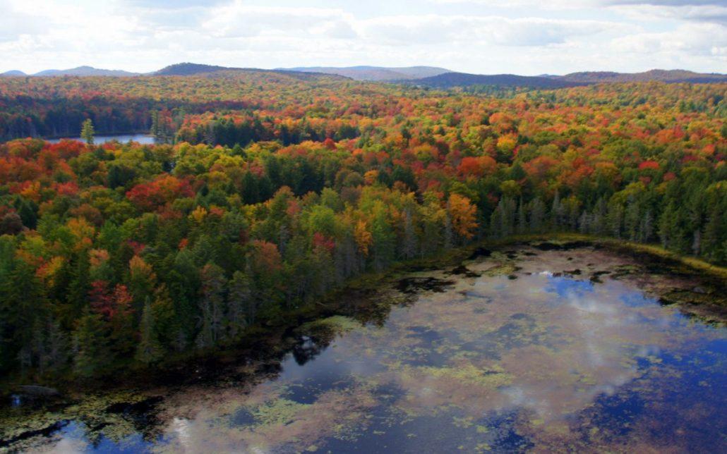 Lake and fall colors reflected.