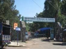 Turismo Xochimilco artesanias flores (2)