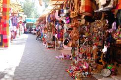Turismo Xochimilco artesanias flores (8)