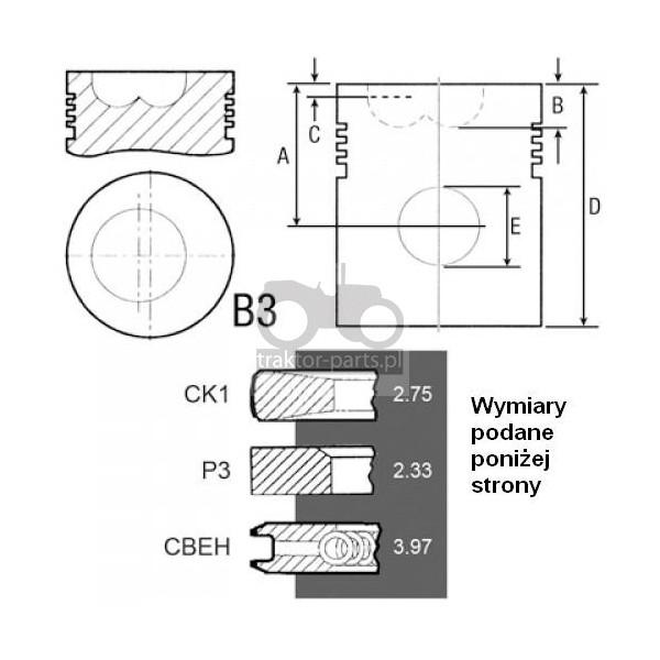 2030-ZN24 Tłok kpl. silnika komora 22mmCase,David Borwn