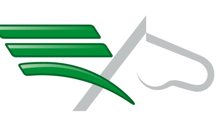 pegaso ala verde