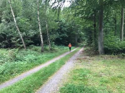 Löpning på Balsberget.