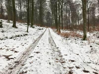 Vinterterräng på Balsberget