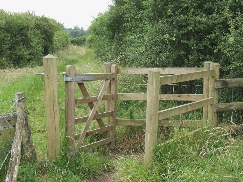 Image Result For Fence Pics Word