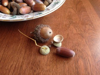 Two acorns, 1 small and long and one large and round, sit on a wooden table. There is a bowl full of brown long acorns in a porcelain bowl. Wild food foraging in the city.